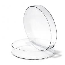 Petri dish